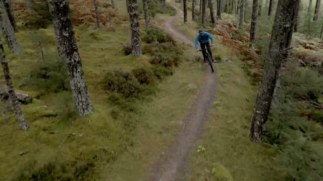 彼は森林の自転車道をサイクリングとして男性のマウンテンバイカーをキャプチャドローン映像 - サイクリングロード点の映像素材/bロール