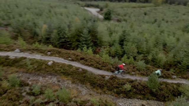 vidéos et rushes de images de drone capturant deux vététistes pendant qu'ils font du vélo le long d'un sentier forestier - vtt