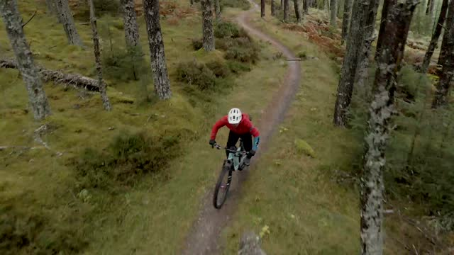 drone footage capturing two mountain bikers as they cycle through a wooded bike trail - bicycle stock videos & royalty-free footage