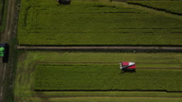 Drone footage harvesting rice with a huge combine
