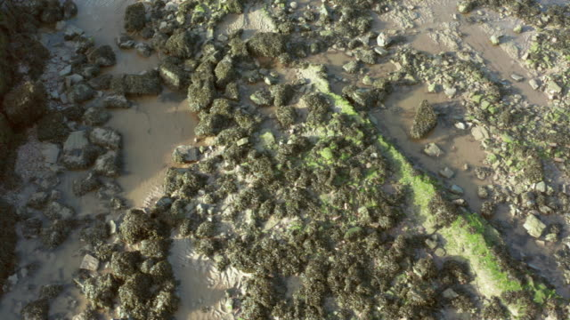 drone footage of a scottish beach in south west scotland after the tide has went out - tide out stock videos & royalty-free footage