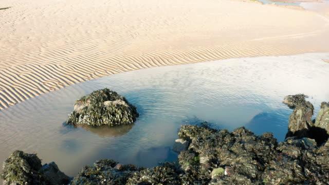 潮が満たされた後、スコットランド南西部のスコットランドのビーチのドローン映像 - johnfscott点の映像素材/bロール