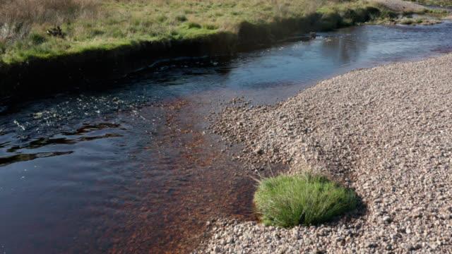 vidéos et rushes de images de drone d'une petite rivière dans l'ecosse rurale - eau douce