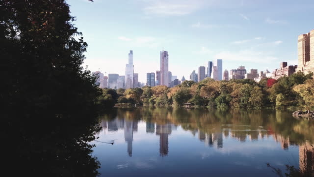 drone footage of central park on a late autumn afternoon. - central park manhattan stock videos & royalty-free footage
