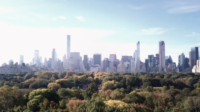 Drone footage of Central Park on a late Autumn afternoon.