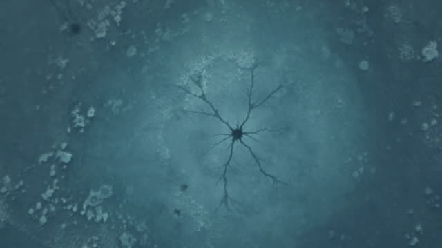 Drone footage of cracks and craters on the ice of a frozen lake.