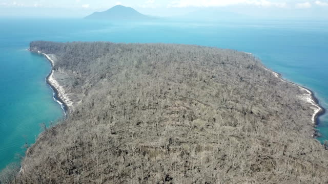 Drone footage of island completely killed off near Anak Krakatau volcano in Indonesia after a major collapse and eruption caused a huge tsunami on...