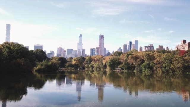 drone footage of new york city's central park on a crisp autumn morning. - central park manhattan stock videos & royalty-free footage