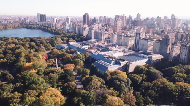 drone footage of new york city's metropolitan museum of art - museum stock videos & royalty-free footage