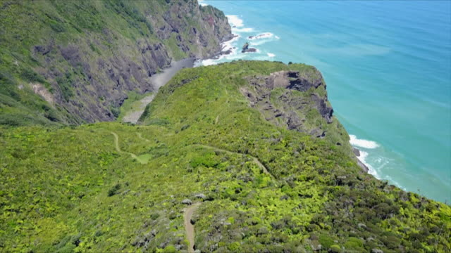 Drone footage of part of Mercer Bay loop track and native bush land above cliffs