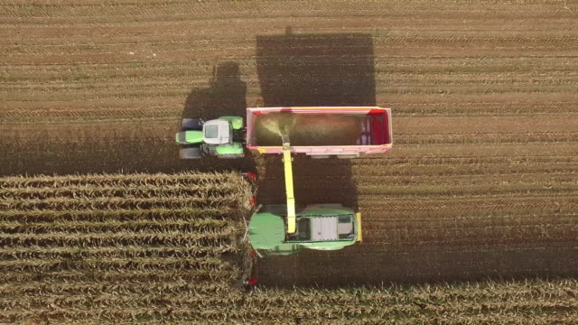 Drone footage of silage harvester collecting crops in field on sunny day