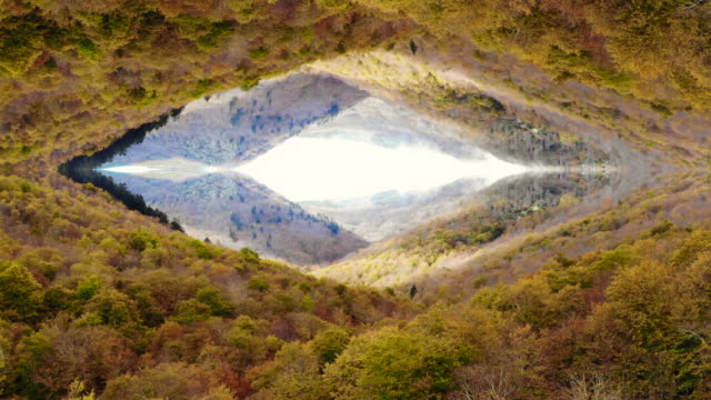 drone footage of stunning autumn forest with mirror effect. - 自然保護区点の映像素材/bロール