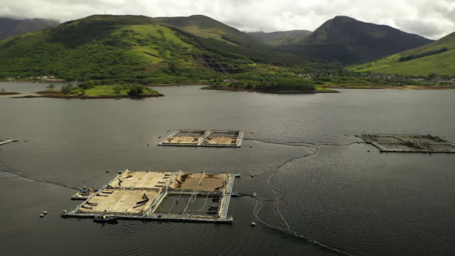 drone footage of the loch leven salmon farm operated by mowi asa in fort william scotland uk on wednesday june 19 2019 - loch点の映像素材/bロール