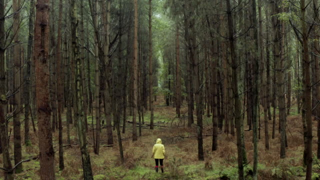 drone footage of woman in yellow raincoat in wet forest - autumn stock videos & royalty-free footage