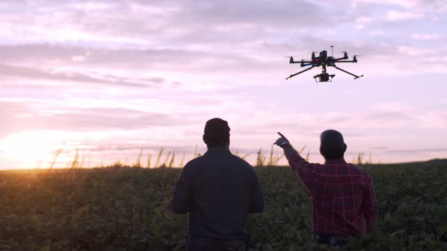 stockvideo's en b-roll-footage met drone in sojagewas. - onbemand luchtvaartuig
