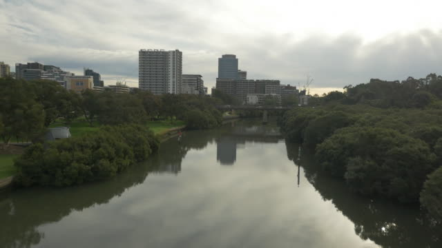drone low level aerial tracking shot travelling west along parramatta river with mangroves on the riverbank on both sides and building reflections in... - ferry terminal stock videos & royalty-free footage