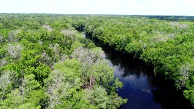 A drone orbits part of the Santa Fe River near Gainesville Florida