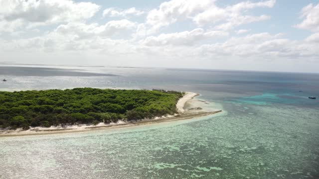 stockvideo's en b-roll-footage met drone overflight of the lady musgrave tropical coral lagoon - zeegezicht