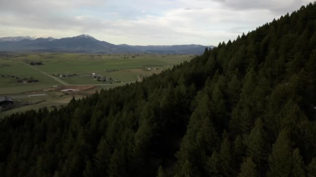 A drone pans from a forested mountain towards countryside of Bozeman Montana