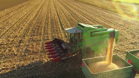 drone point of view combine harvester chute filling trailer with harvested corn in sunny,rural field,slow motion - organic farm stock videos & royalty-free footage