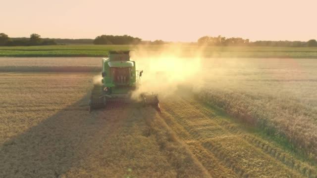 ドローンの視点を組み合わせるハーベスタ収穫日当たりの良い、牧歌的な農村の小麦の収穫、スローモーション - トラクター点の映像素材/bロール