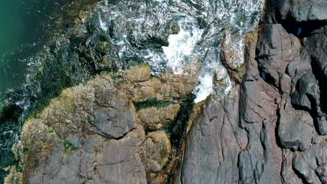 drone point of view, directly above, zoom in, waves on the rocks, punta del este coastline, uruguay - 地衣類点の映像素材/bロール