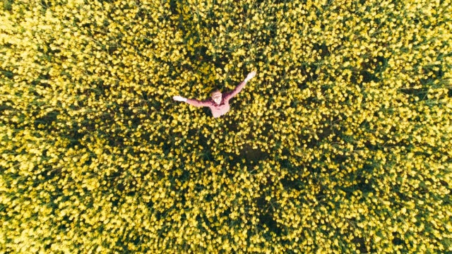 drone point of view exuberant farmer throwing hat in sunny rural yellow canola field,real time - slovenia stock videos & royalty-free footage