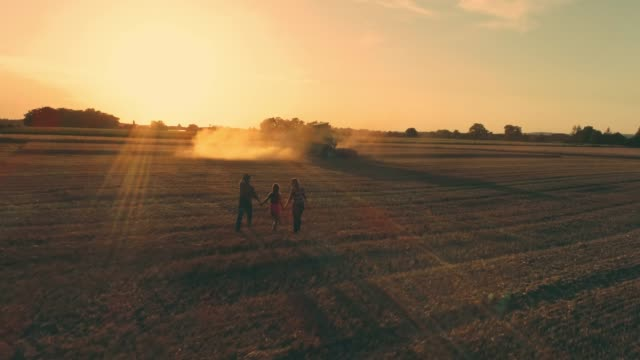 drone point of view farmer family walking in sunny,idyllic rural wheat field at sunset,slow motion - produttore video stock e b–roll
