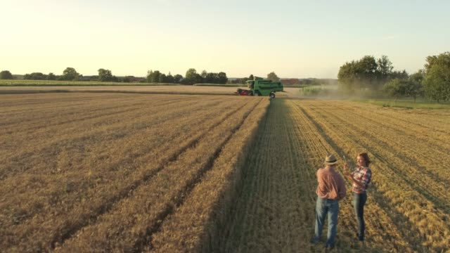 drone point of view farmers talking,watching combine harvester harvesting sunny,rural wheat crop,slow motion - tractor stock videos & royalty-free footage