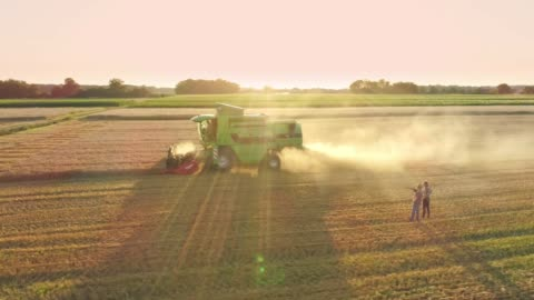 drone point of view farmers watching combine harvester harvesting sunny,rural wheat crop,slow motion - tractor stock videos & royalty-free footage