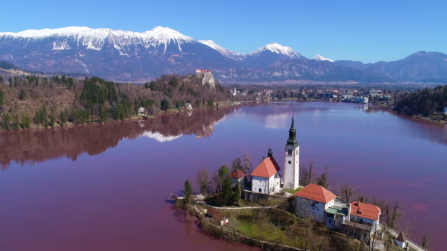 drone point of view on lake bled covered with red cyanobacteria - slovenia stock videos & royalty-free footage