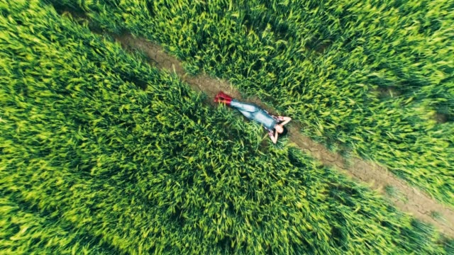 drone point of view young teenage girl farmer relaxing,laying in rural,green wheat field,real time - sdraiato video stock e b–roll