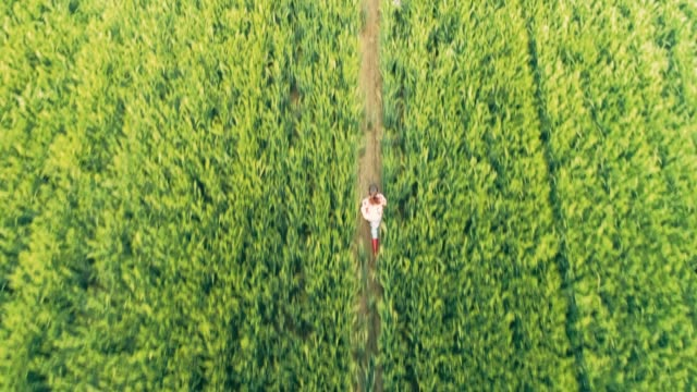 Drone point of view young teenage girl farmer running in rural green wheat field,slow motion