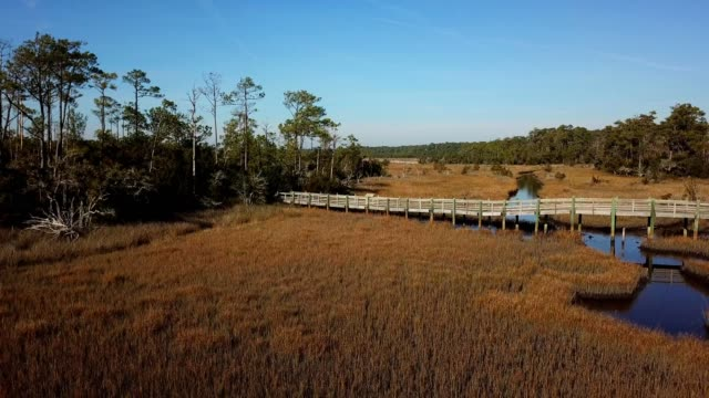 a drone reverses over a waterway marsh in the croatan national forest in cedar point north carolina - dronebase stock videos and b-roll footage