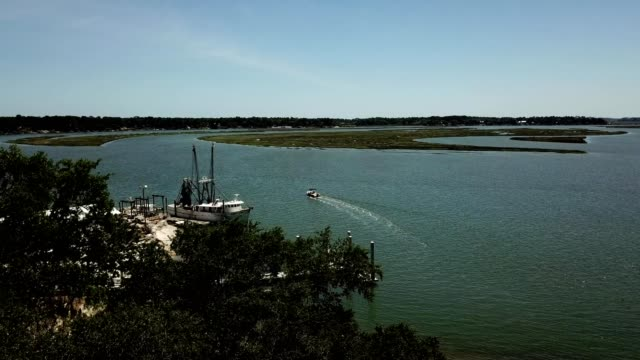 a drone rises over trees to view may river in bluffton south carolina - south carolina stock videos & royalty-free footage