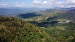 Drone Shot Doi-Chang coffee farm in Chaingrai