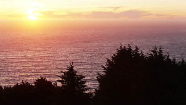 drone shot flying along silhouetted clifftop trees panning to stack rocks on the oregon coast - oregon coast stock videos & royalty-free footage