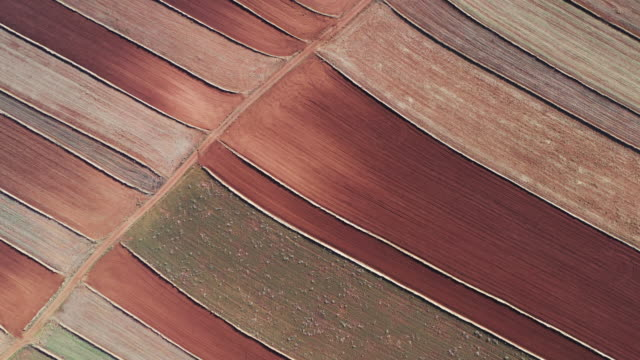 drone shot flying forward whilst looking down on geometric shaped farmland, teruel, spain - abstract stock videos & royalty-free footage
