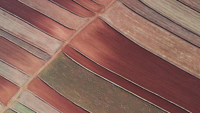 vídeos y material grabado en eventos de stock de drone shot flying forward whilst looking down on geometric shaped farmland, teruel, spain - majestuoso