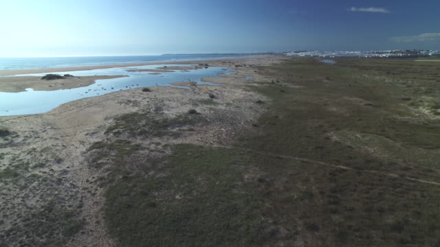 drone shot flying over a beautiful sandy beach on the coast of cadiz province, spain. - andalusien stock-videos und b-roll-filmmaterial