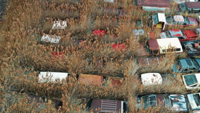 drone shot flying over an overgrown field full of rusting vehicles, salt lake city, utah, united states of america - decline stock videos & royalty-free footage
