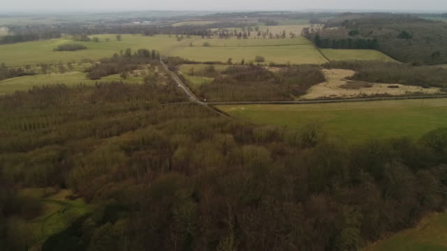 drone pov shot flying over grantham woods - lush stock videos & royalty-free footage