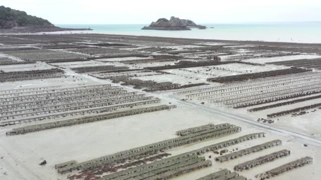 drone shot flying towards an oyster farm in cancale, france - ミヤコドリ点の映像素材/bロール