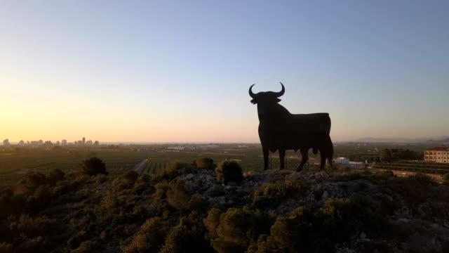 スペインの道路で雄牛のサインのドローンショット - 雄牛点の映像素材/bロール