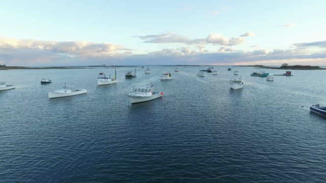 stockvideo's en b-roll-footage met drone shot of cape porpoise harbor in maine - maine