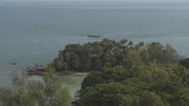 drone shot of forest by the sea on bintan island in indonesia - indonesia islands stock videos & royalty-free footage