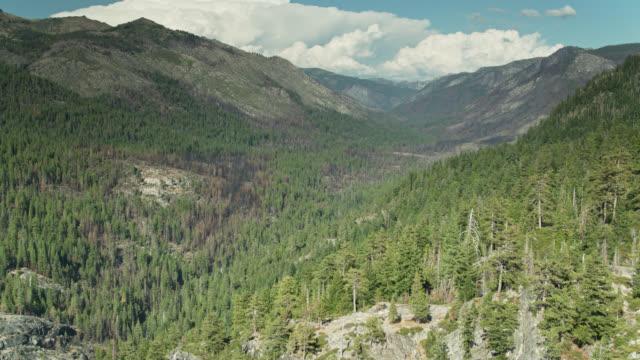 シエラネバダのゴージャスな谷のドローンショット - 国有林点の映像素材/bロール