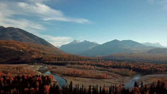 vídeos y material grabado en eventos de stock de drone shot of mountains and middle fork of flathead river along glacier national park border with evergreen forest with autumn colored leaves showing in tamarack trees. - pinaceae