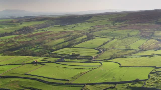 drone shot of pastoral landscape in yorkshire dales - patchwork landscape stock videos and b-roll footage