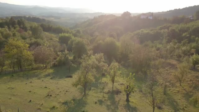 Drone shot of ranch field and wooded hills on a sunny day